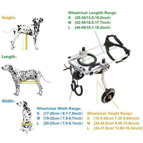 Pet Dog Wheelchair Rehabilitation