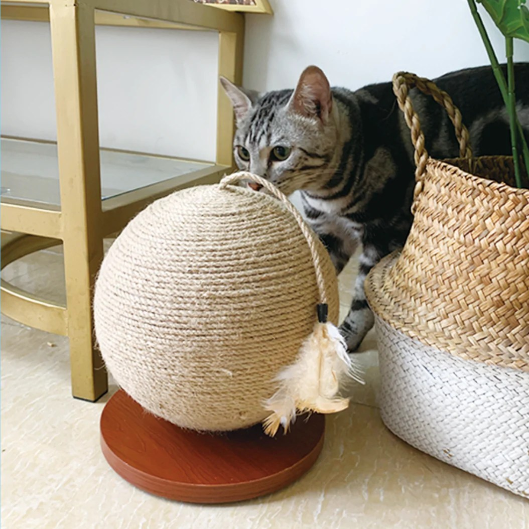 Petion 白森寵物   暴龍哥精選   玩極都唔厭! 劍麻貓抓球 – Petion白森寵物