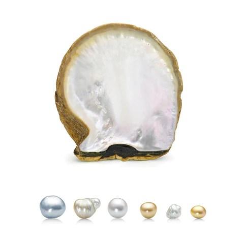 Golden South Sea Pearls, Myanmar