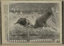 Resultado de imagen de Tom McBreen swimmer