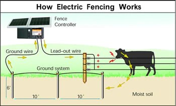 Properly Grounding An Electric Fence – Gallagher Fence