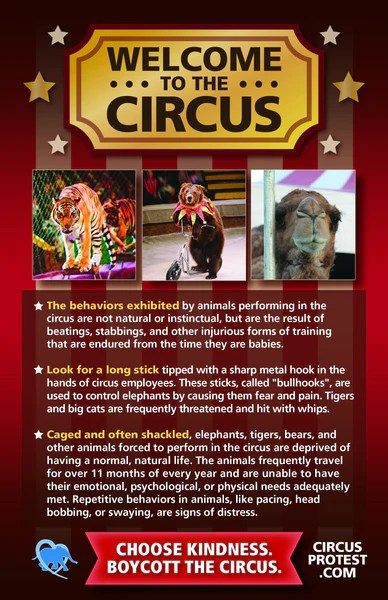 Circus Protest Leaflet Includes Elephants