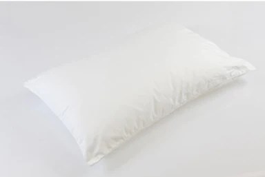 dream science classic pillow online