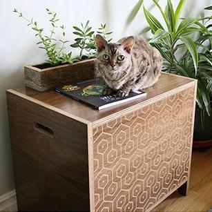 CURIO Modern Cat Litter Box  Walnut  Pattern  hauspanther