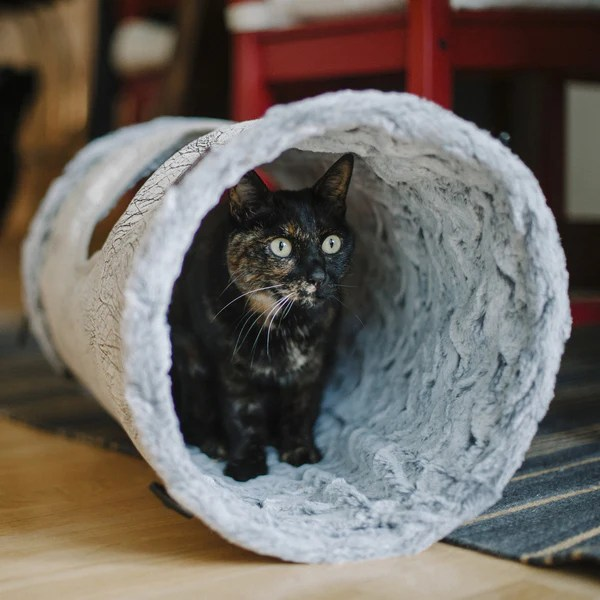 Purr  Pounce Cat Tunnel from PLAY  hauspanther