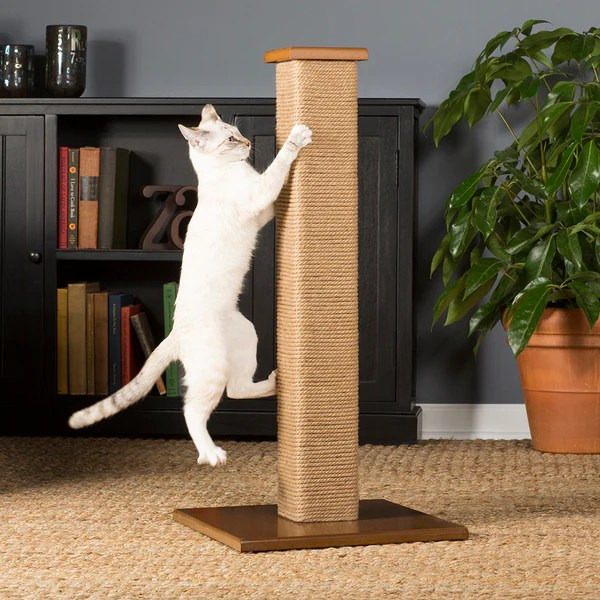 Square Jute Cat Scratching Post from Prevue Pet  hauspanther