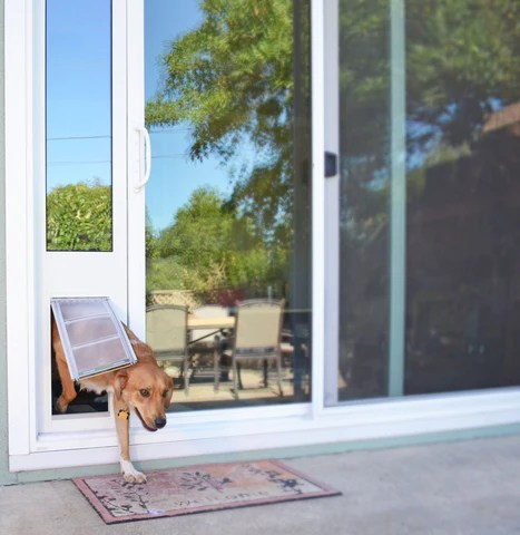 sliding pet door vs patio panel pet doors