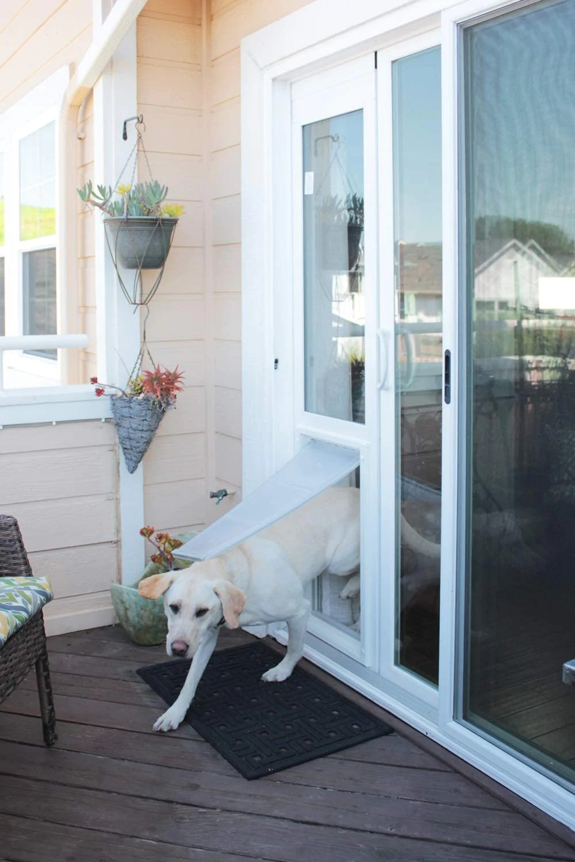 endura flap vinyl sliding glass dog door