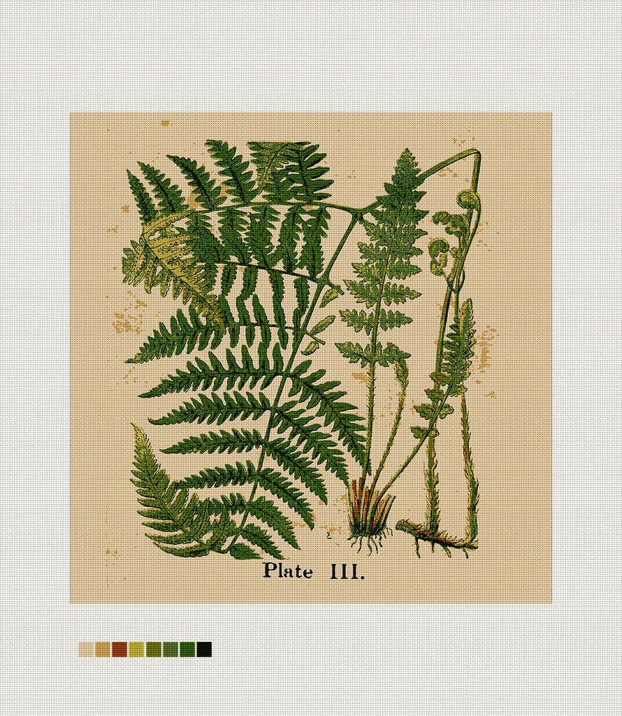 naturalist ferns needlepoint cushion