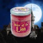 House Of The Lion Cranberry Apple Spice Scented Candle Something Rad Candle Company