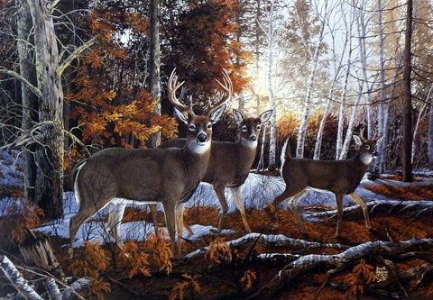Fall Coffee Wallpaper Artist Donald Blakney Unframed Whitetail Deer Art Print