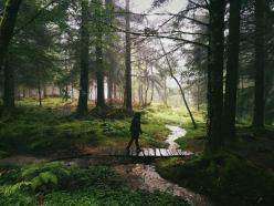 Gentri Lee in the Norwegian Woods