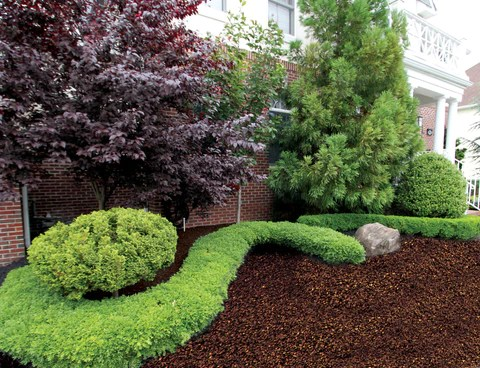 rubber mulch colors - brown
