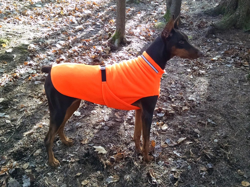 orange side chair of dnc winter dog coats & fleece jackets for cold weather   cross peak products