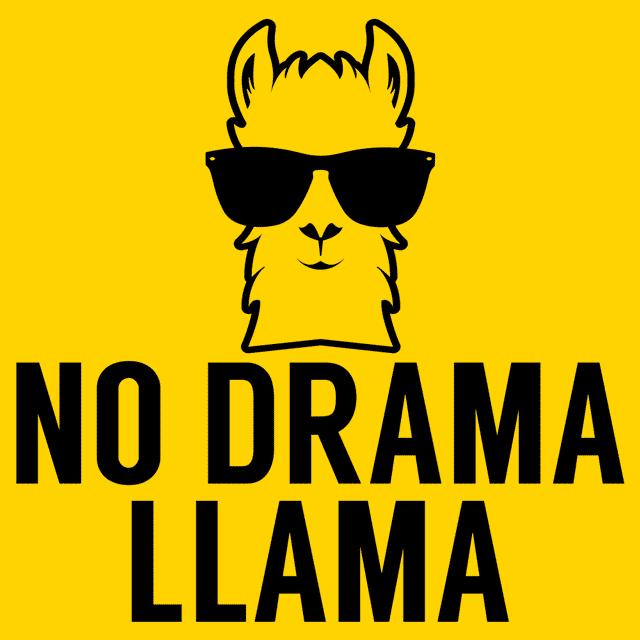 No Drama Llama T Shirt Textual Tees