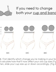 Sister sizes the bra secret every woman should know thirdlove also  size gungoz  eye rh