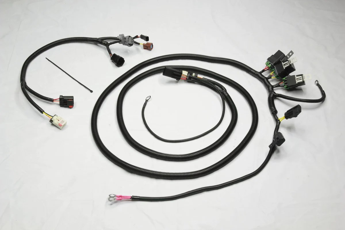 small resolution of aeromotive wire harnes
