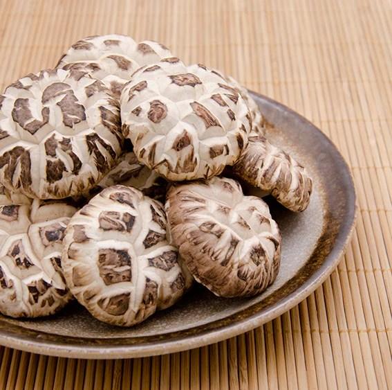 菇菌松茸 | 素菜食材 – 均成辦館