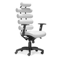 Modern Leather Office Chair with Ultimate Lumbar Support ...