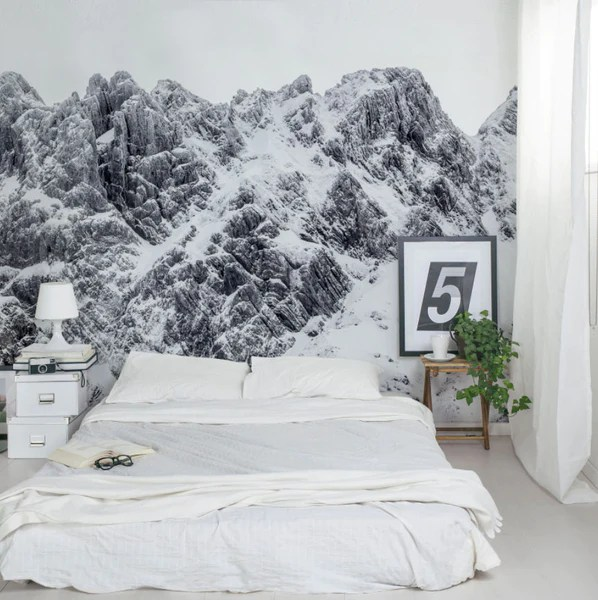 20 accent wall mural