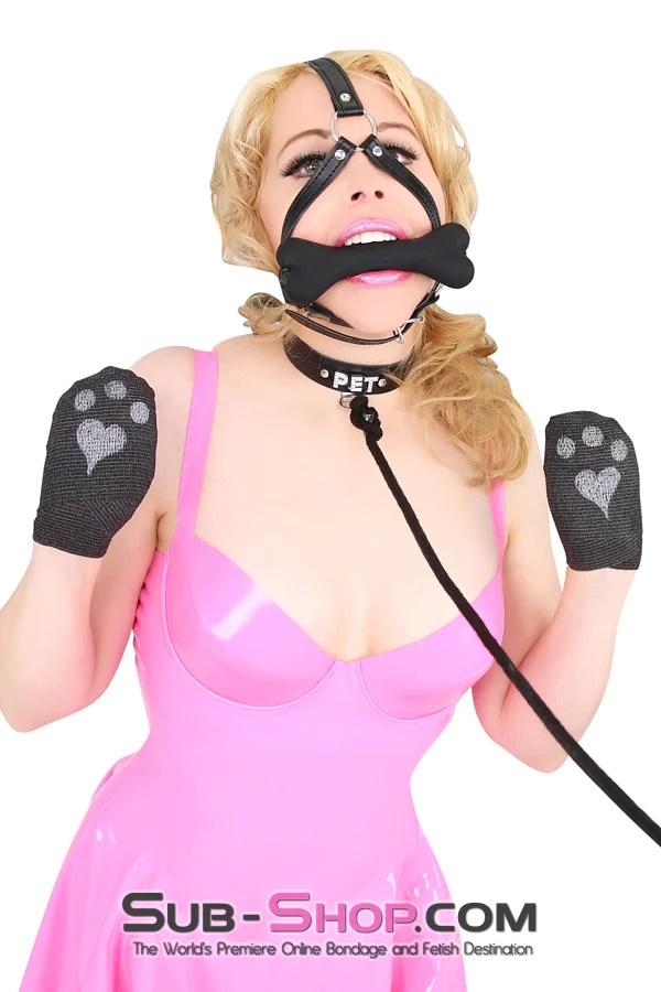 Sissy Pet Play : sissy, Penned, Punishment:, Creating, Contract, Sissy, Slave, Sub-Shop, Bondage, Fetish, Superstore