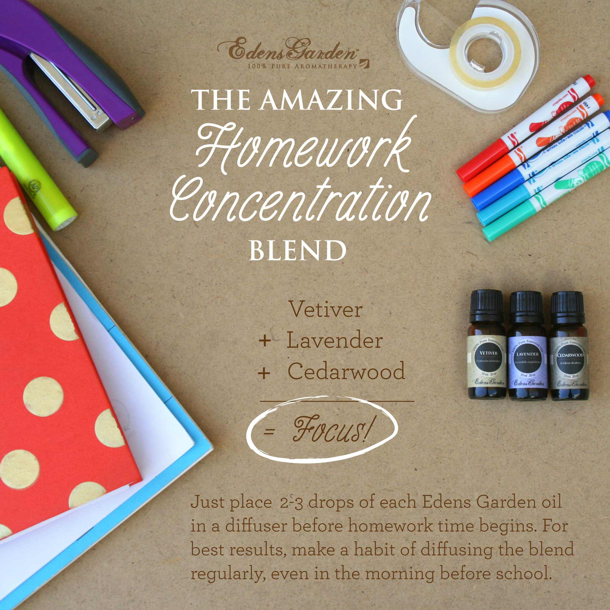The Amazing Homework Concentration Blend - Essential Oils for Focus