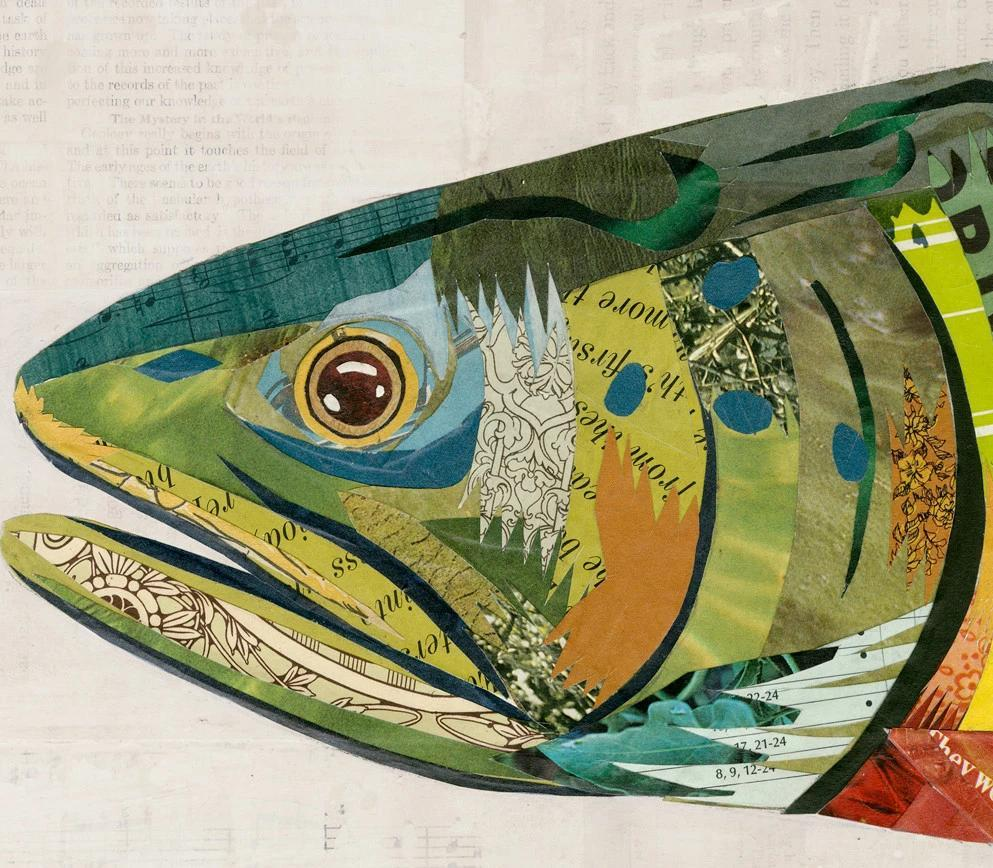 Brook Trout Paper Collage Art Dolan Geiman