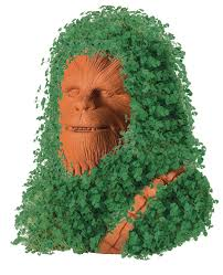 Chia Pet Images : images, Chewbacca, Toytown, Toronto