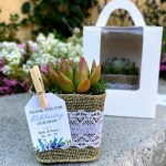 Burlap Wrapped Succulent Party Favors Haneelove