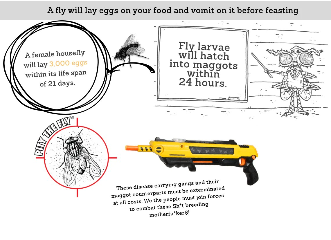 medium resolution of  a female housefly will lay 3 000 eggs within its lifespan of 21 days fly larvae