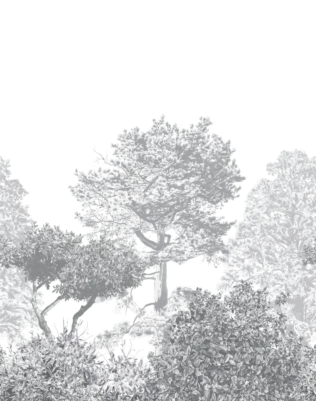 Black Trellis Wallpaper Hua Trees Mural Gray The Pattern Collective