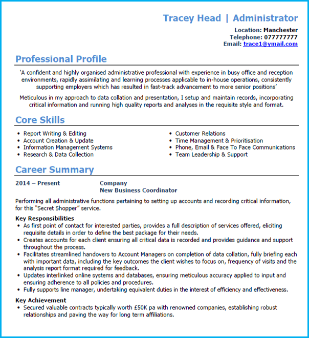 basic cv template with