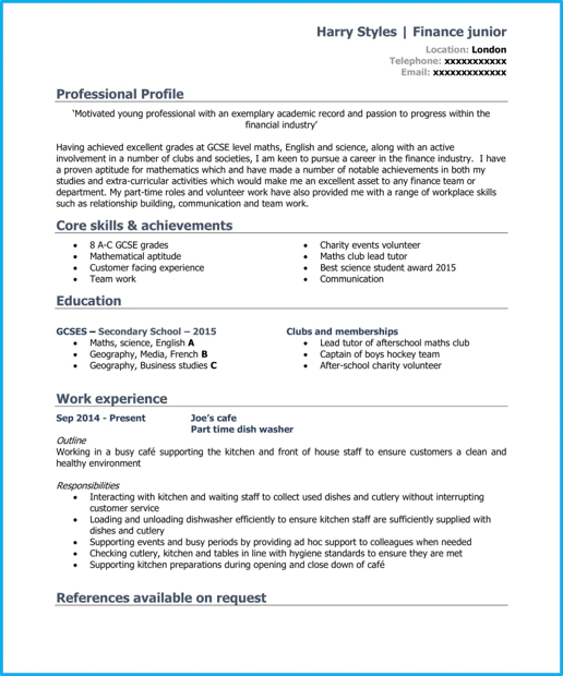 resume template after first job with work experience