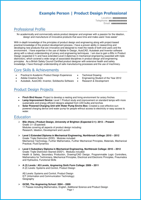 Cv Template For Young Person 18 Professional CV