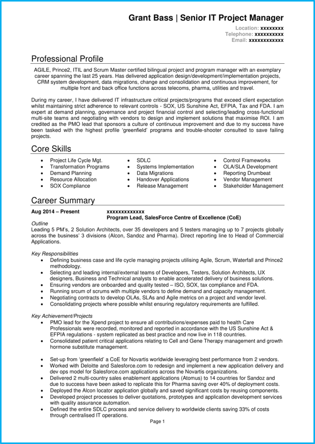 it team manager resume examples