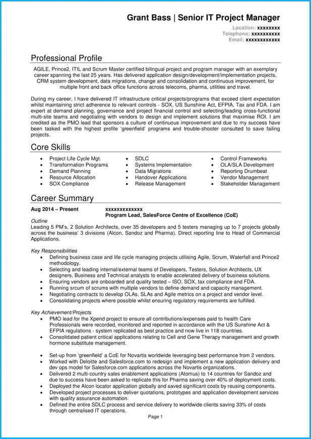 resume brief introduction