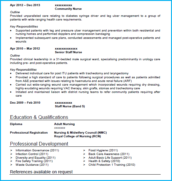Nursing CV Example With Writing Guide CV Template