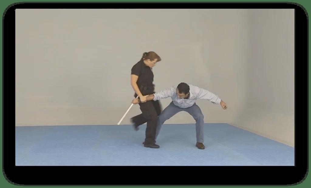 Order Kenpo Techniques