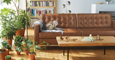 eq3 sofa toronto airport reverie by at five elements furniture 2 seat leather