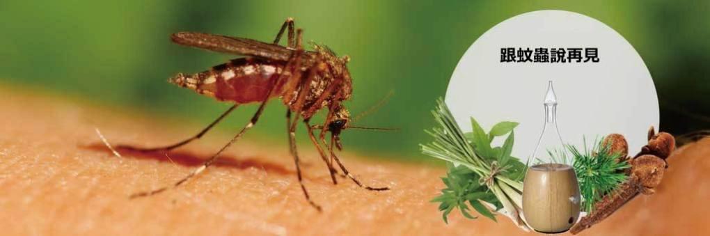 精油驅趕蚊蟲