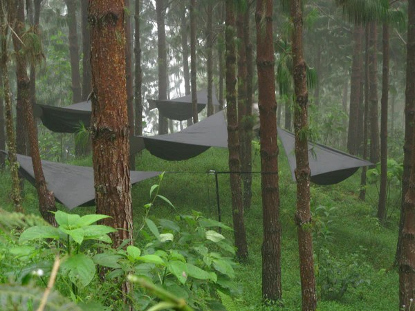 hammock chair stand calgary kneeling posture benefits tips from users hennessy a forest of hammocks