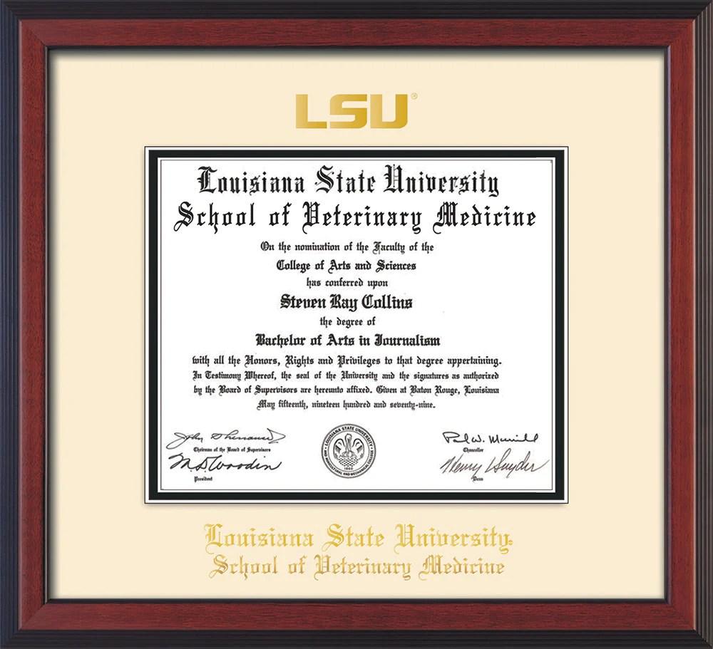 Harvard University Medicine Diploma