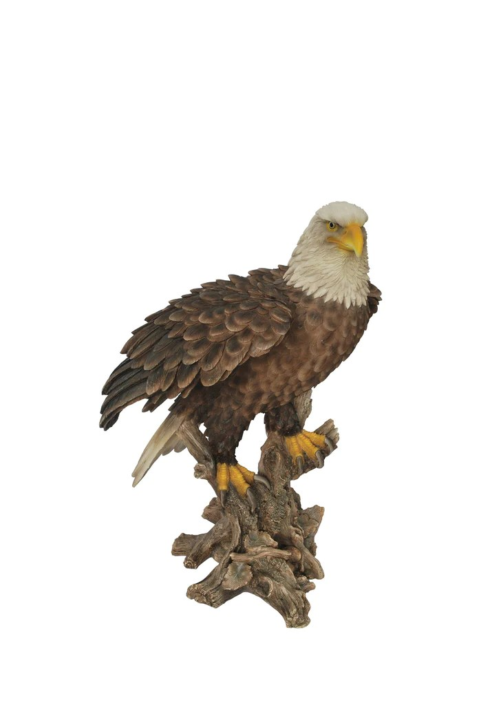 One Furniture Outdoor Eagle