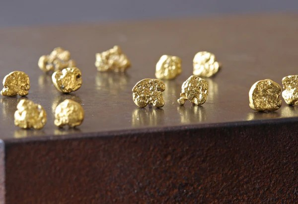 Raw Gold Nugget Stud Earrings  Alexis Russell