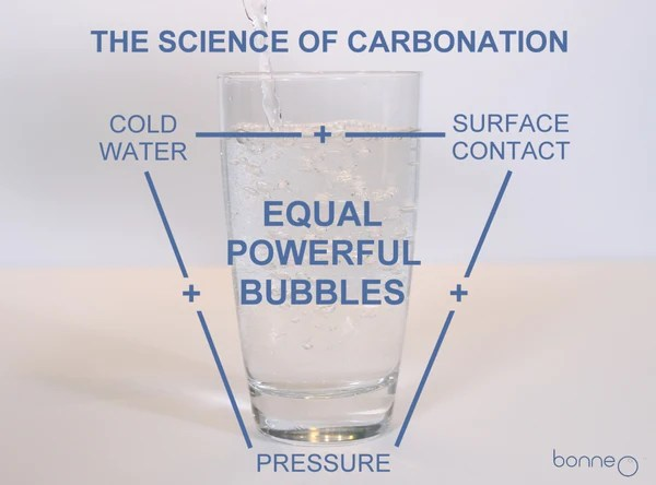 The Science of Carbonation: A Visual Guide to Great ...