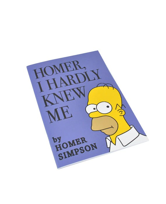 Homer I Hardly Knew Me Simpsons Inspired Notebook
