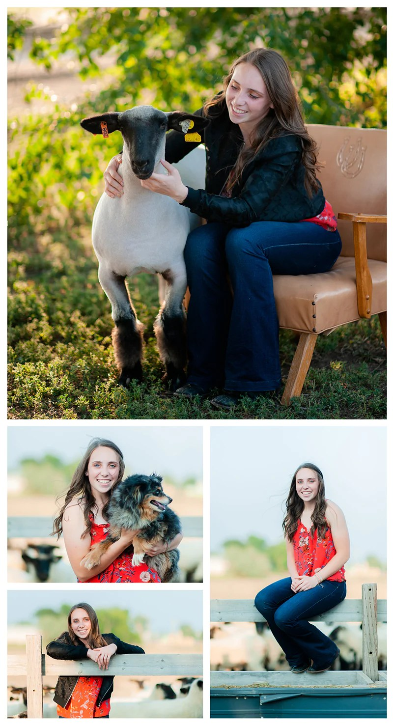 Livestock and Girls! Senior photo session