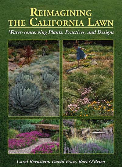 reimagining california lawn