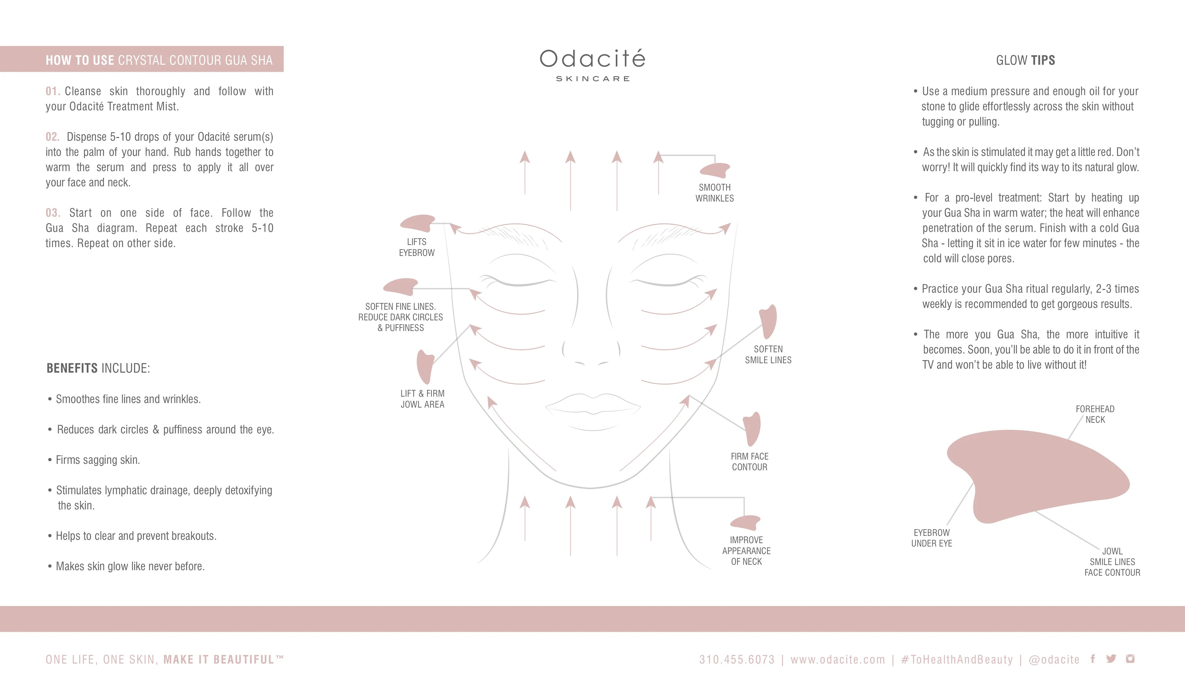 hight resolution of diagram of side of face