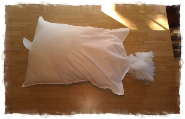 welcome to a little pillow company